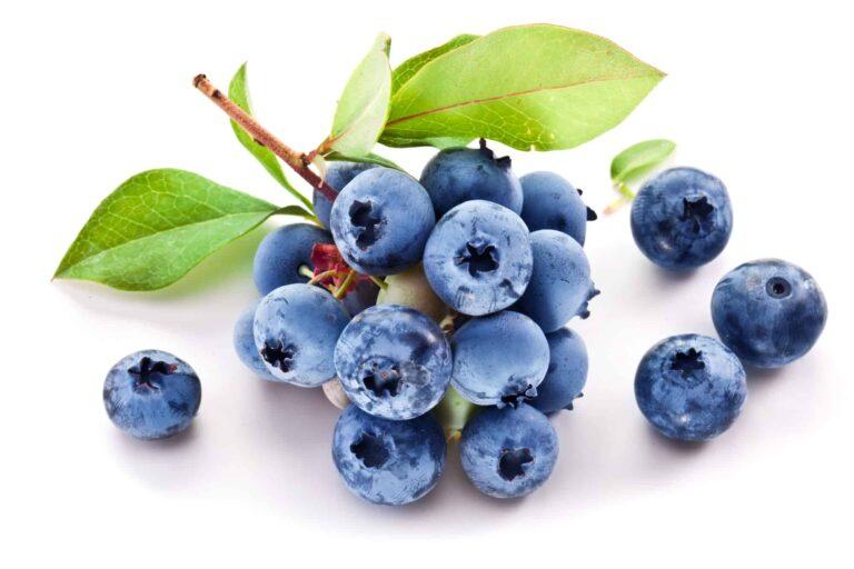 How Long Do Blueberries Last?