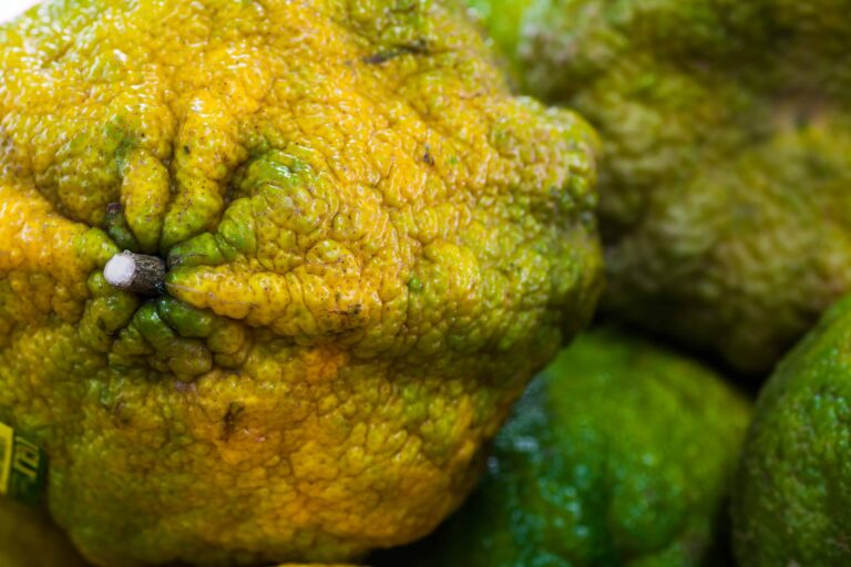 What Is An Ugli Fruit?